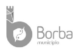 Município de Borba