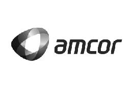 Amcor Flexibles Leaderpack - Embalagens, Lda.