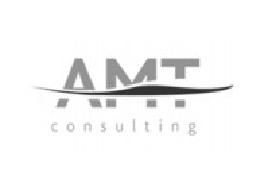 AMT Consulting, Lda.