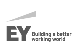 Ernst & Young, S.A.