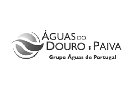 Águas do Douro e Paiva, S.A.
